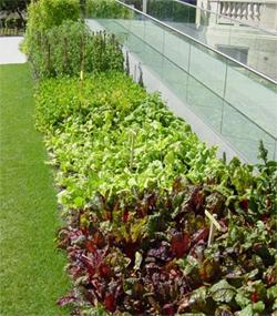 Administracion for Mantenimiento de parques y jardines